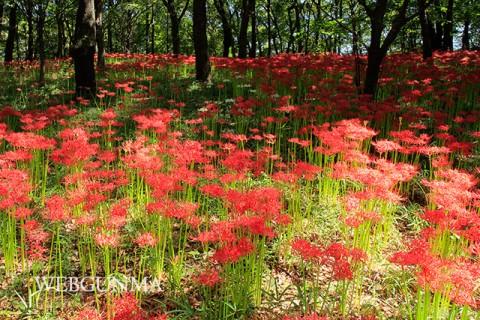 御嶽山自然の森公園
