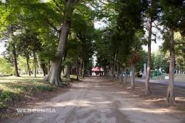 土師神社の参道