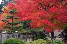 桜山公園の日本庭園周辺