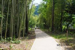 高山社跡専用駐車場からの遊歩道