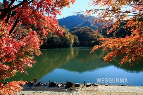 碓氷湖の紅葉