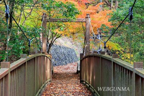 蝉の渓谷のつり橋