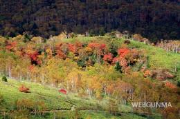 野反湖の秋の紅葉
