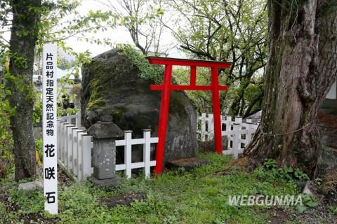 地名由来の花咲石(片品村)