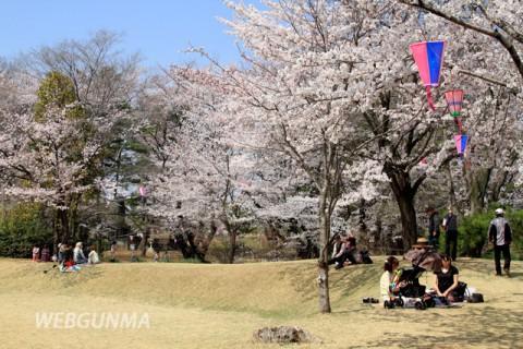 城之内公園の桜