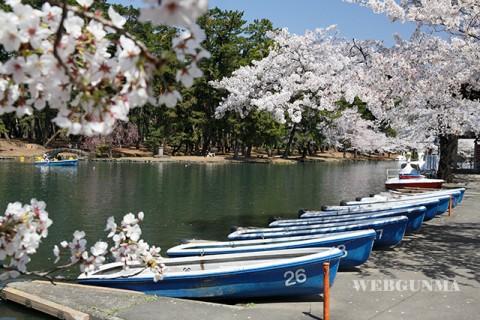 敷島公園ボート乗り場