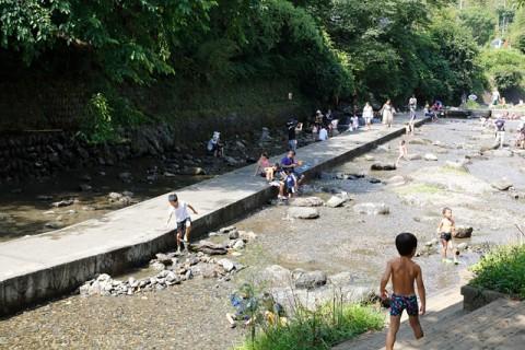 親水公園西側の小平川の清流